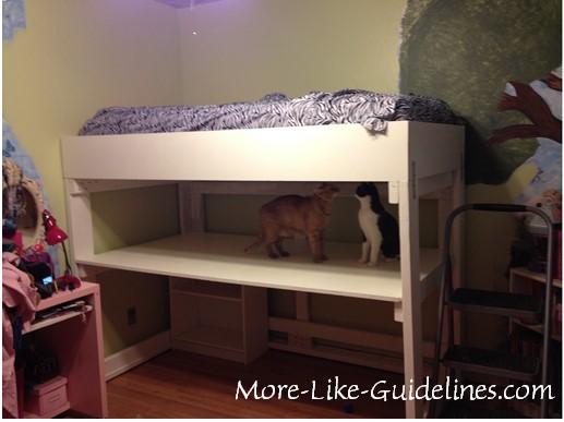 BB loft bed